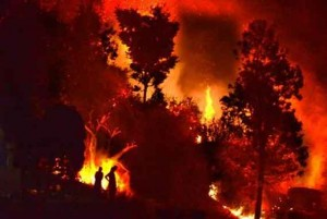 Utharakhand-Fire