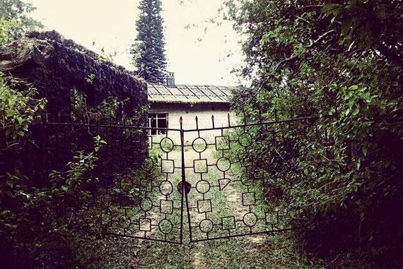 bonacaud-bungalow-1