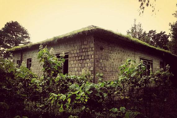 bonacaud-bungalow-4