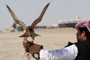 UAE-Hunting