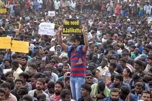 Jallikattu-Protest,
